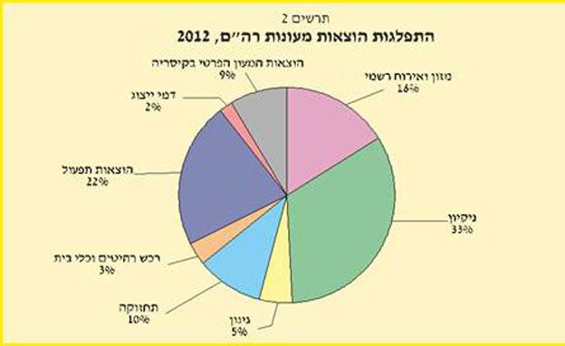 התפלגות הוצאות המעונות בשנת 2012 (צילום: מבקר המדינה)