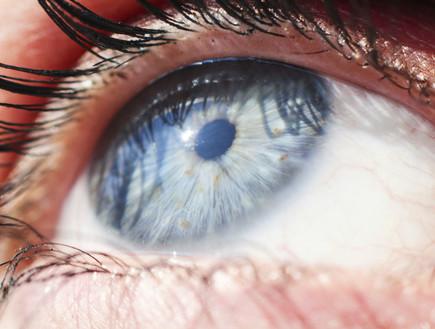 תקריב של עין