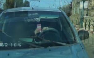 תמונות קשות: נהיגה עם טלפון נייד