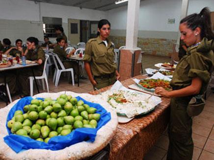 """חדר אוכל צבאי. ארכיון (צילום: דו""""צ)"""