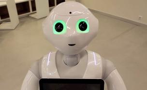 הרובוט פפר