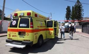 זירת רצח אשקלון (צילום: דוברות מד״א)