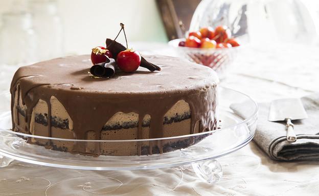 עוגת גלידה שוקולד ודובדבנים (צילום: אסף אמברם, אוכל טוב)