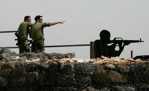 כוחות בגולן, ארכיון (צילום: רויטרס)