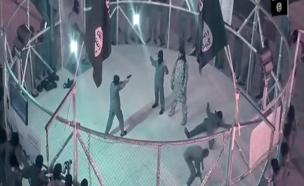 """כלוב המלחמה של דאע""""ש (צילום: חדשות 2)"""