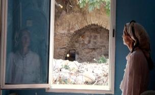 דפנה לאה דרייפוס (צילום: חדשות 2)