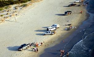 מתפרעים על החוף, ארכיון (צילום: רשות הטבע והגנים)
