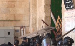 צפו בעימותים בהר הבית, אתמול (צילום: חטיבת דובר המשטרה)