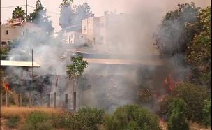 השריפה סמוך למושב, אתמול (צילום: חדשות 2)