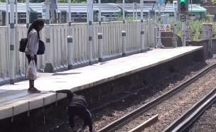 מרים את האייפון מפסי הרכבת (צילום: Felix Johnson, Youtube, יוטיוב)