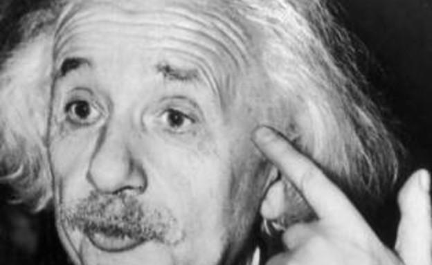 איינשטיין (צילום: metro.co.uk)