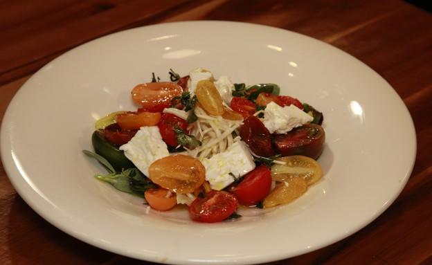 סלט עגבניות  (צילום: רענן כהן, מאסטר שף)