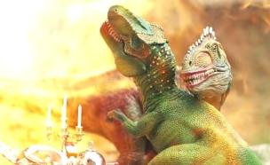 דוח ויראלי (צילום: You Tube, YouTube)