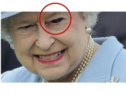 המלכה לטאה (צילום: stargods.org)