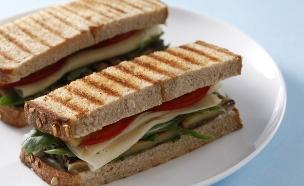 סנדוויץ גבינה (צילום: אפיק גבאי, באדיבות מועצת החלב)