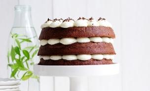 עוגת שכבות (צילום: שרית נובק - מיס פטל, אוכל טוב)