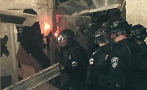 מהומות בהר הבית (צילום: חדשות 2)