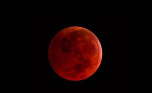 ירח אדום (צילום: NASA)