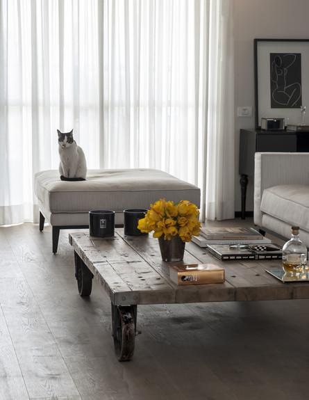סידור שולחן, עיצוב יעל דרוקמן (צילום: אורית אלפסי )