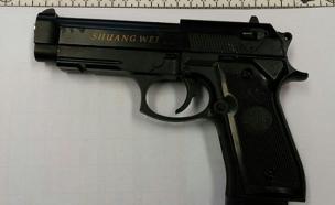 אקדח (צילום: חדשות 2)