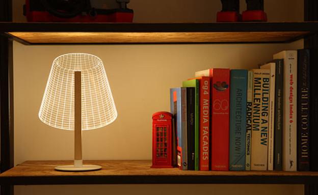החמישייה 29.9, מנורה אשלייתית, (6) (צילום: דרור סיתהכל)