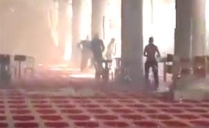 הר הבית זריקות אבנים מסגד אל אקצ'ה (צילום: חדשות 2)