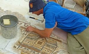 פסיפס בן 1,500 שנה נחשף בקריית גת (צילום: רשות העתיקות)