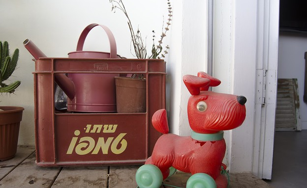 הדירה של מיקי וזיו,, כלבלב (צילום: עומרי אמסלם)