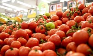 גם מחיר העגבניות יורד (צילום: חדשות 2)