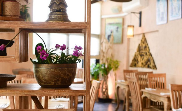 בית תאילנדי (צילום: נמרוד סונדרס, אוכל טוב)