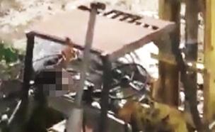 """מ""""מ בכפיר מתגרה בפלסטינים בחברון (צילום: חדשות 2)"""