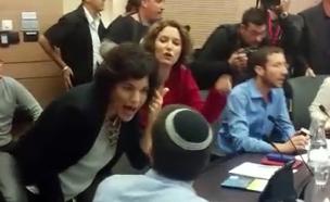 דיון בכנסת (צילום: חדשות 2)