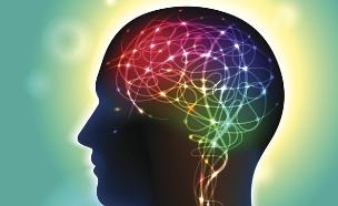 מוח (צילום: אימג'בנק / Thinkstock)