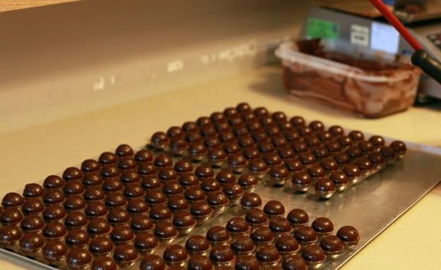 טבעון מישי שוקולד (צילום: ג'רמי יפה, אוכל טוב)