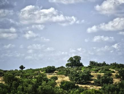 נועה פז, הנוף הקסום הנשקף מהבית. (5)