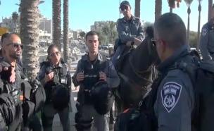 """לוחם מג""""ב שחיסל את המחבל משחזר (צילום: משטרת ישראל)"""