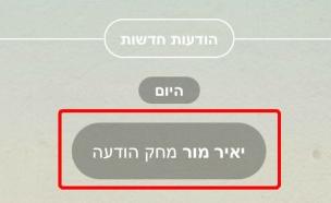 מחיקת הודעה שנשלחה ב-Viber (צילום: NEXTER)