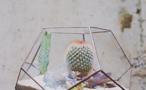 חתונות 08, צורות גיאומטריות מחליפות את סגנון הוינטג' העדין (צילום: freeheartproject.com)