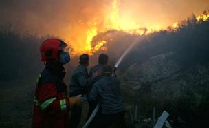 שריפת הענק, המדינה תפצה (צילום: רויטרס)