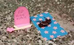 """""""תיקי התיקנית"""", הג'וק שזכה להלוויה מרשימה (צילום: Michael Alvard, Facebook)"""
