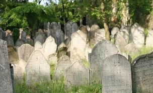בית קברות יהודי (אילוסטרציה: Jiri Vaclavek, Thinkstock)