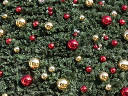 נצרת עץ חג מולד