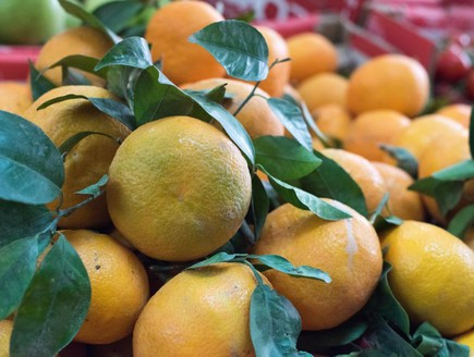מנדרינות קלמנטיונות פרי הדר ירקות ופירות דיאב עבאס