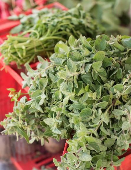 זעתר ירקות ופירות דיאב עבאס