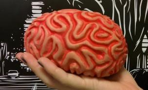 מוח (צילום: אהוד קינן, NEXTER)