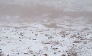 בסיביר הקופאת יתגעגעו לשלג כזה (צילום: גיא ורון, חדשות 2)