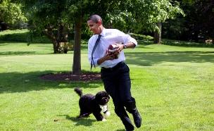 ברק אובמה משחק פוטבול עם הכלב בו על מדשאת הבית הלבן, 2009 (צילום: The White House, GettyImages IL)
