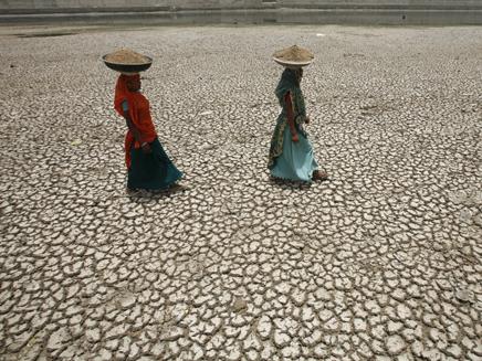 משבר בתעשיית המזון - שדות יבשים במזרח אס (צילום: רויטרס)