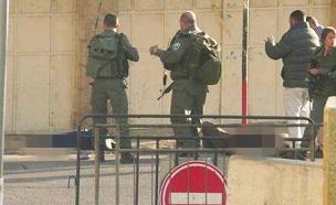 זירת פיגוע הדקירה, בתחילת החודש (צילום: חטיבת דובר המשטרה)