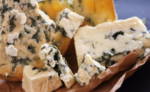 גבינת רוקפור (צילום: smartair.co.il)